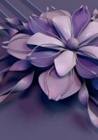flower, rendering, petals