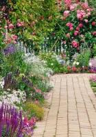 flowers, garden, green