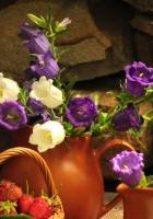 flowers, jugs, strawberry
