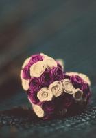 flowers, small, flower