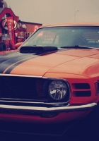 ford mustang, boss 302, auto