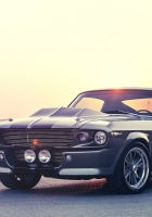 ford, shelby, mustang