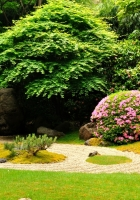 garden, stones, registration