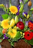 gerbera, flowers, bouquets