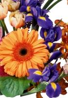 gerbera, iris, lily