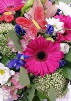 gerberas, irises, daisies