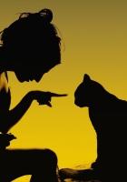 girl, cat, face