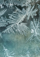 glass, pattern, frost