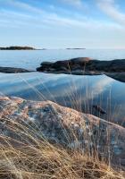 grass, stones, coast