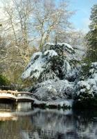 hatley park, japan, garden