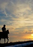 horseback rider, girl, silhouette