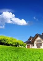 house, grass, summer