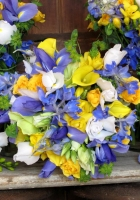 irises, roses, freesia