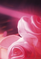 key, rose, soft
