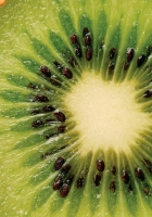 kiwi, slice, fruit