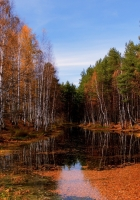 lake, autumn, trees