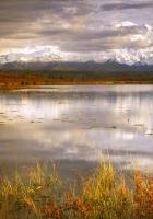 lake, grass, cloudy