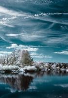 lake, winter, trees
