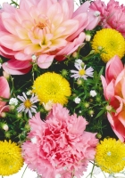 lilies, carnations, flowers