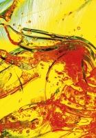 liquid, debris, glass