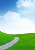 meadow, road, slope