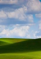 meadows, plain, greens
