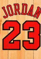 michael jordan, chicago bulls, number