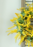 mimosa, wreath, yellow