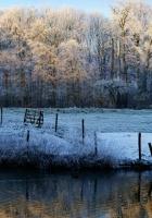 morning, lake, frost