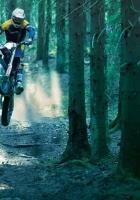 motorcycle, racer, wood