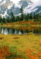 mount shuksan, washington, park