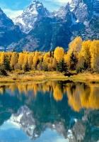 nature, autumn, mountains