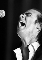 nick cave, show, microphone