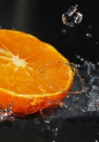 orange, segment, splashes