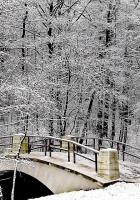 park, bridge, winter