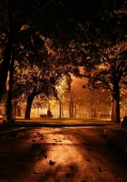 park, night, lighting