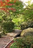 path, stones, garden