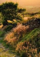 path, stony, descent