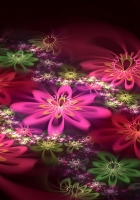 patterns, flowers, fractal