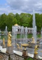 peterhof, fountains, park