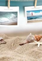 photography, beach, shells