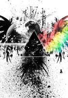 pink floyd, bird, graphics