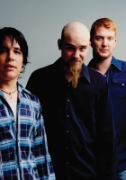 queens of the stone age, bald, beard