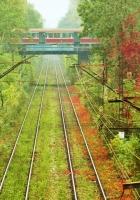rails, ways, tram