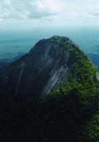 ridge, top, trees