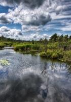 river, sources, wood
