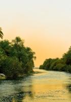 river, tropics, vegetation