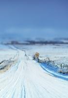 road, sign, snow