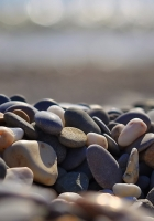 rocks, beach, nature