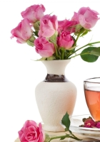 rose, cup, tea